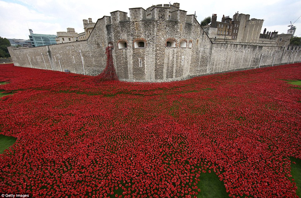Poppies of the Tower of London