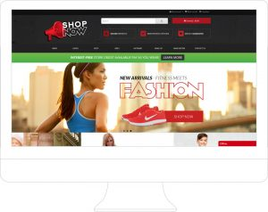 Shop-Now - Website Design