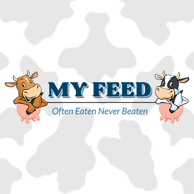 MyFeed Logo